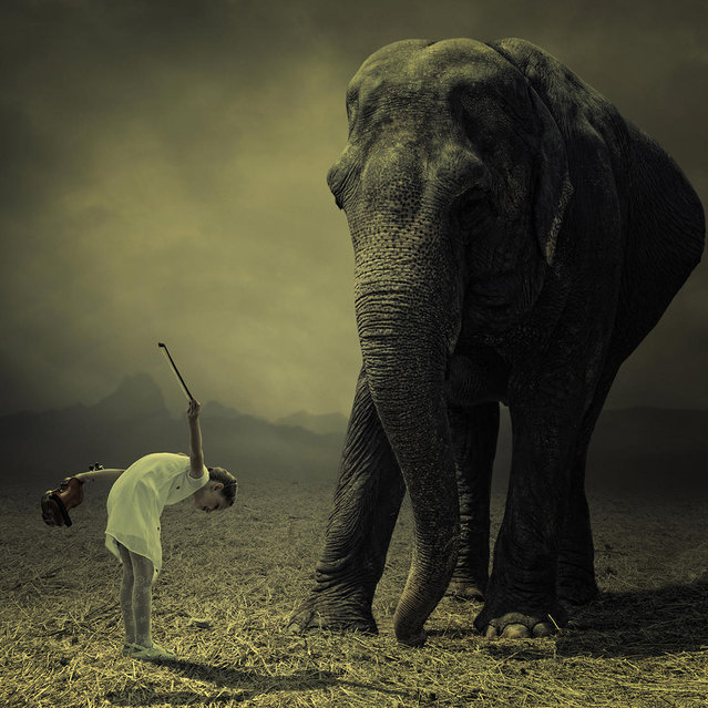 """""""End of the show"""". (Photo by Ionut Caras)"""