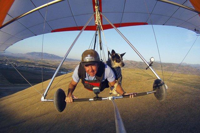 Dan McManus and his service dog Shadow hang glide together outside Salt Lake City, Utah, July 22, 2013. (Photo by Jim Urquhart/Reuters)