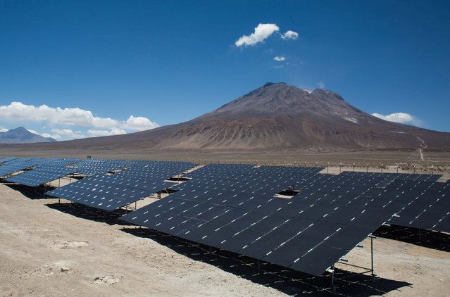 Solar panels producing renewable energy are seen in the photovoltaic park in Ollague, Antofagasta region, northern Chile January 9, 2016. (Photo by Pablo Sanhueza/Reuters)