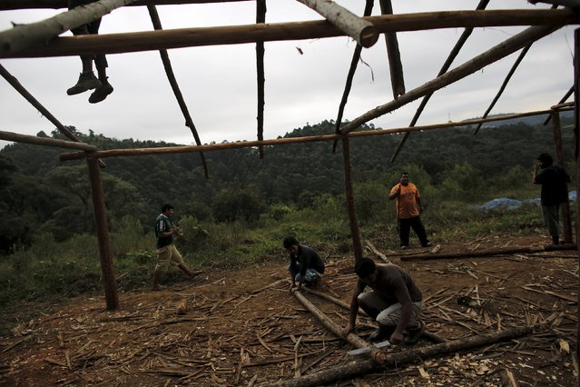 Guarani Indian men work on a new house in the village of Itakupe at Jaragua district, in Sao Paulo April 30, 2015. (Photo by Nacho Doce/Reuters)
