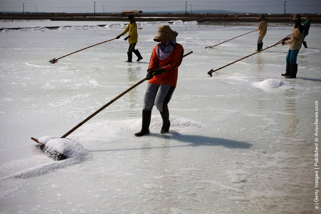 Farmers collect salt during a harvest in the the salt production process in Sumenep on Madura island, Indonesia