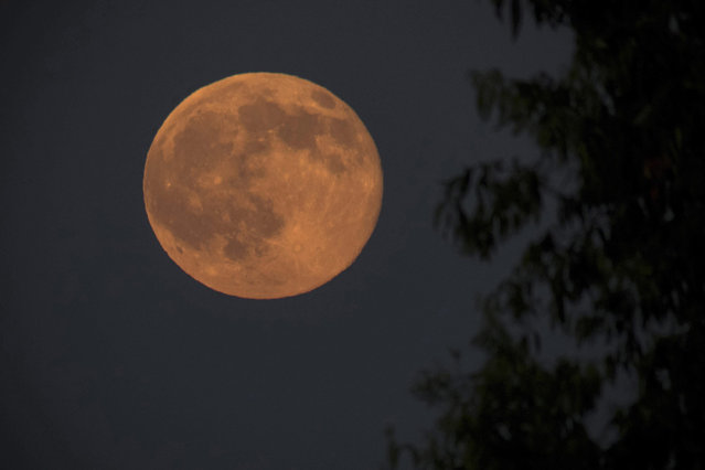 A photohraph made avaiable on 21 June 2016 showing a full moon during the shortest night of the year near Nagykanizsa, 208 kms southwest of Budapest, Hungary, late 20 June 2016. (Photo by Szilard Gergely/EPA)