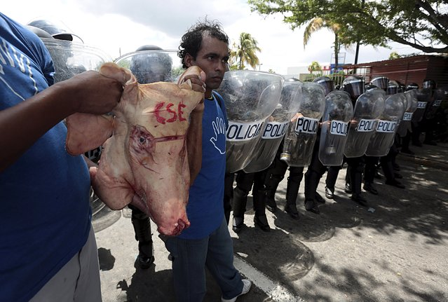 Opposition supporters carry a pig's head with the acronym of the Supreme Electoral Council (CSE) on it, near a line of riot police officers during a protest in Managua, Nicaragua August 26, 2015. (Photo by Oswaldo Rivas/Reuters)