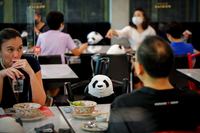 A stuffed panda is placed on a chair as a means to enforce social distancing at a restaurant in Bangkok, Thailand, 19 May 2020. Thailand has relaxed stringent lockdown measures allowing certain businesses, including dine-in services, to resume operations. As a result, businesses are coming up with innovative ideas to not only enforce social distancing to adhere to the new normal, but also keeping it attractive to customers. Thailand eased restrictions after the number of coronavirus infections dropped. (Photo by Diego Azubel/EPA/EFE)