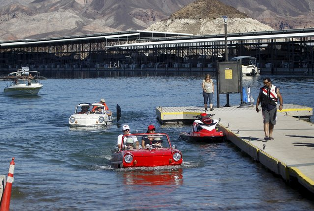 A 1965 Amphicar (L) driven by Dean Baker of Lake Havasu, Arizona, and a 1963 Amphicar, driven by Rob Vondracek of Fountain Hills, Arizona, drive out of Lake Mead during the first Las Vegas Amphicar Swim-in at Lake Mead near Las Vegas, Nevada October 9, 2015. (Photo by Steve Marcus/Reuters)