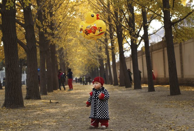 One-year-old Qiqi holds a ballon on a street outside Diaoyutai State Guesthouse in central Beijing, in this November 8, 2013 file photo. (Photo by Reuters/China Daily)
