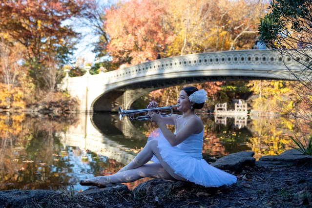 Dancer and musician Seira Soraya, plays the trumpet near Bow Bridge in Central Park on November 09, 2020 in New York City. Soraya has been out of work due to the coronavirus (COVID-19) pandemic and is using this time to work on a personal project. (Photo by Alexi Rosenfeld/Getty Images)