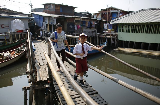 A school boy crosses a bridge in Luar Batang, one of the oldest kampongs in Jakarta, dating back to the16th century, in north Jakarta September 30, 2014. Picture taken September 30, 2014. (Photo by Darren Whiteside/Reuters)