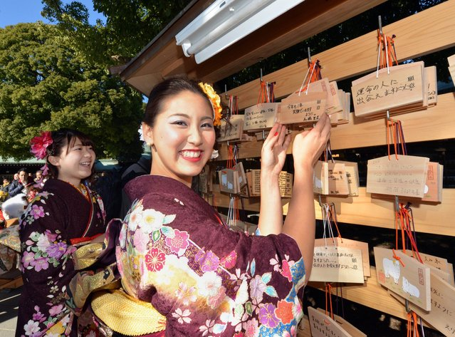 """Twenty-year-old tour guides dressed in traditional kimonos hang up """"emas"""", or votive tablets, with their written wishes at Tokyo's Meiji Shrine after attending a purification ceremony with a Shinto priest to celebrate Japan's Coming of Age Day on January 9, 2015. Since tour guides will be busy working on Japan's national holiday Coming-of-Age Day on January 12, the company had a ceremony for them ahead of time. (Photo by Yoshikazu Tsuno/AFP Photo)"""