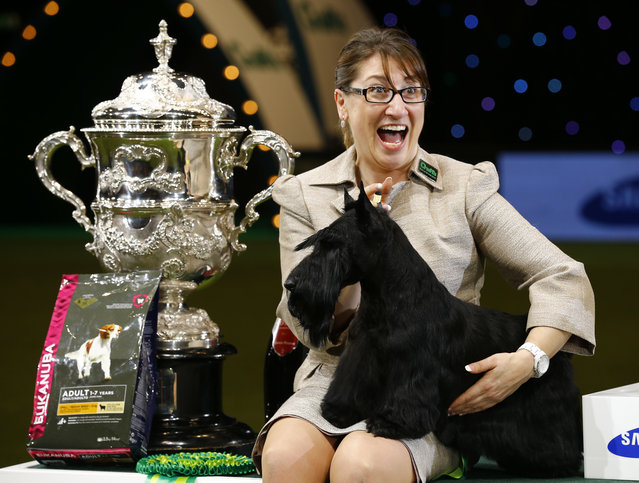 Handler Rebecca Cross poses with Knopa the Scottish Terrier after winning Best in Show on the last day of Crufts Dog Show in Birmingham, central England, March 8, 2015. (REUTERS/Darren Staples)