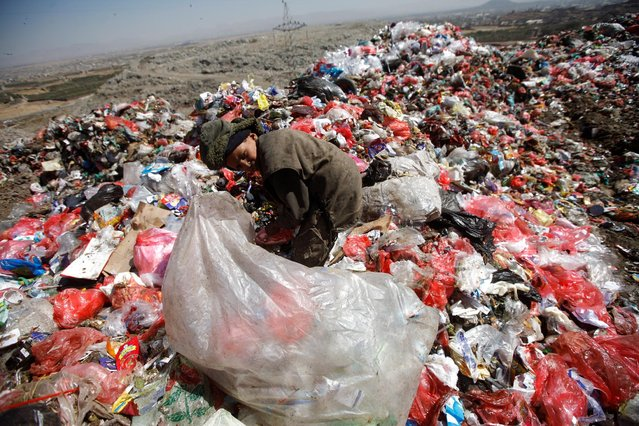 A boy collects recyclable items from a pile of rubbish at a landfill site on the outskirts of Sanaa, Yemen November 16, 2016. (Photo by Mohamed al-Sayaghi/Reuters)