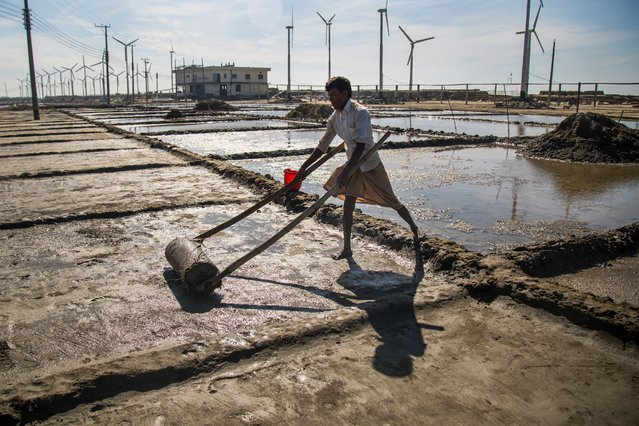 Salt farming is more lucrative, the farmers say, but makes for back-breaking and time-consuming work. (Photo by Noor Alam/Majority World)