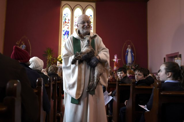 Fr. Denis Crosby blesses a live lamb during a Pattern Day mass to St. Brigid at the holy well of St. Brigid in Liscannor, Ireland February 1, 2017. (Photo by Clodagh Kilcoyne/Reuters)