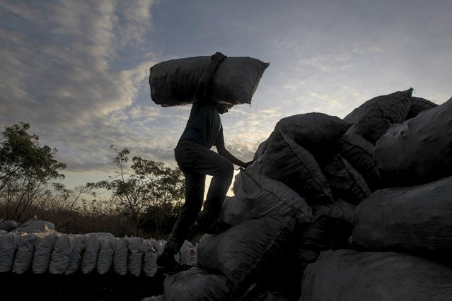 A worker carries bags containing coal at a traditional charcoal factory at a village in Nagarote town, Nicaragua, June 2, 2015. Around 300 families live off the sale of charcoal in this area located in the dry corridor of Nicaragua. Friday marks World Environment Day. Picture taken June 2, 2015. REUTERS/Oswaldo Rivas