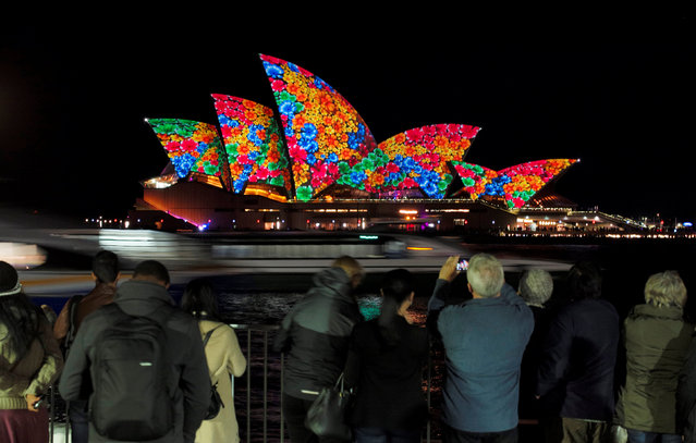 A floral design is projected onto the sails of the Sydney Opera House during the opening night of the annual Vivid Sydney light festival in Sydney, Australia May 27, 2016. (Photo by Jason Reed/Reuters)