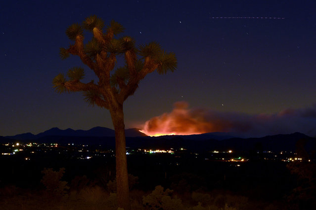 The Lake Fire can be seen burning in the San Bernardino Mountains near Landers, California, USA, 24 June 2015. The Lake Fire, burning now for a week, has charred over 30,000 acres and is expected to burn into July. (Photo by Paul Buck/EPA)