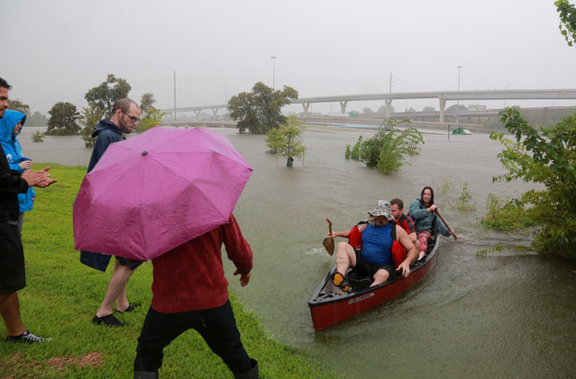 Area residents use a kayak to rescue motorists stranded on Interstate Highway 45 in Houston on August 27, 2017. (Photo by Richard Carson/Reuters)
