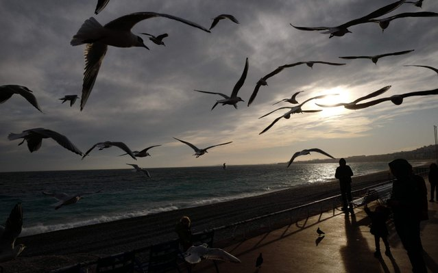 "Seagulls fly over passers by on the ""Promenade des Anglais"" boulevard on the French riviera city of Nice at sunset on February 1, 2020. (Photo by Valery Hache/AFP Photo)"
