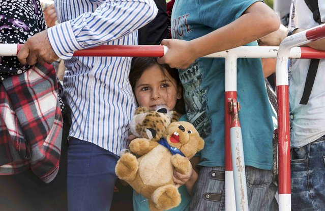 A girl holds a teddy bear as she stands among migrants outside the main railway station in Munich, Germany, September 1, 2015. (Photo by Lukas Barth/Reuters)