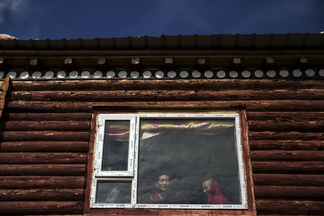 Young Tibetan Buddhist monks look out from inside their cabin at others praying at Buddhist laymen lodge where thousands of people gather for daily chanting session during the Utmost Bliss Dharma Assembly, the last of the four Dharma assemblies at Larung Wuming Buddhist Institute in remote Sertar county, Garze Tibetan Autonomous Prefecture, Sichuan province, China October 30, 2015. (Photo by Damir Sagolj/Reuters)