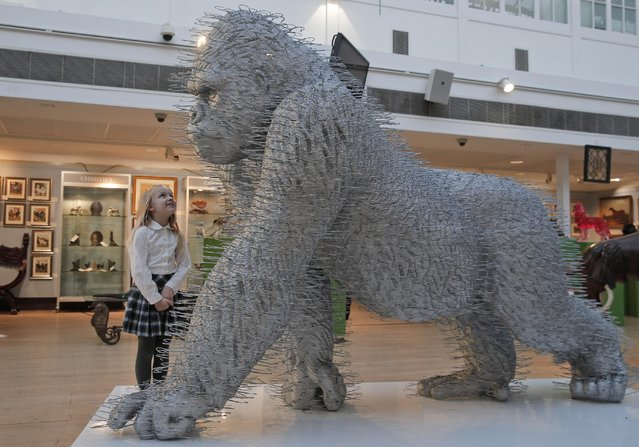 """A girl stands next to an art installation depicting a gorilla entitled """"Silver Back"""" by artist David Mach, as she poses for the photographers during a press preview of a themed auction that features the animal as artistic inspiration, entitled """"Creatures Great and Small"""", in London, Monday, December 15, 2014. (Photo by Lefteris Pitarakis/AP Photo)"""