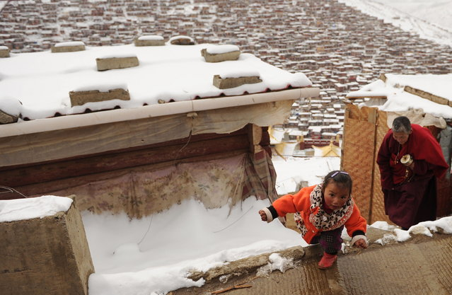 This photo taken on April 5, 2013 shows a child and a Buddhist nun walking after heavy overnight snowfall at Seda Monastery, the largest Tibetan Buddhist school in the world, with up to 40,000 monks and nuns in residence for some parts of the year. Seda, known to Tibetans as Serthar is located in Ganzi prefecture in the west of China's Sichuan province and has become a hotbed of protests and violence since the Tibetan uprisings of March 2008.(Photo by Peter Parks/AFP Photo)