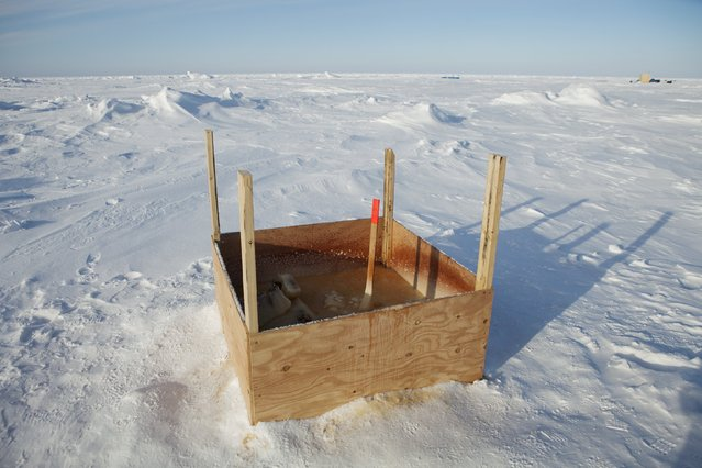 A public toilet stands surrounded by snow near the 2011 Applied Physics Laboratory Ice Station north of Prudhoe Bay, Alaska, March 18, 2011. (Photo by Lucas Jackson/Reuters)