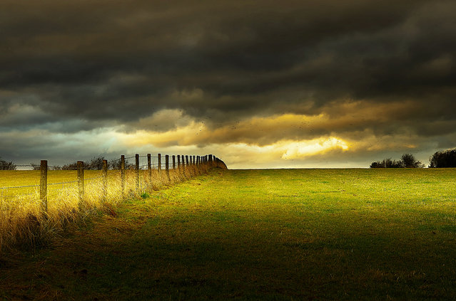 The fence. (Eric Goncalves)
