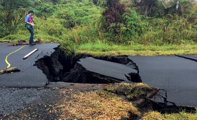 A geologist inspects cracks on a road in Leilani Estates, following eruption of Kilauea volcano, Hawaii May 17, 2018. (Photo by Reuters/United States Geological Survey)
