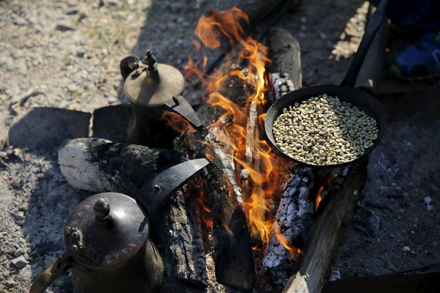 Coffee beans are roasted by Bedouin men during preparations to welcome the release of their relative Uda Tarrabin, in the Tarrabin tribe's village near the Bedouin town of Rahat in southern Israel December 10, 2015. (Photo by Amir Cohen/Reuters)