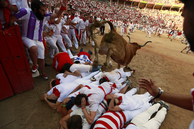 Revellers protect themselves as a calf jumps over them in the bullring after the 4th day of the running of the bulls at the San Fermin Festival in Pamplona, northern Spain, Tuesday, July 10, 2018. Revellers from around the world flock to Pamplona every year to take part in the eight days of the running of the bulls. (Photo by Alvaro Barrientos/AP Photo)