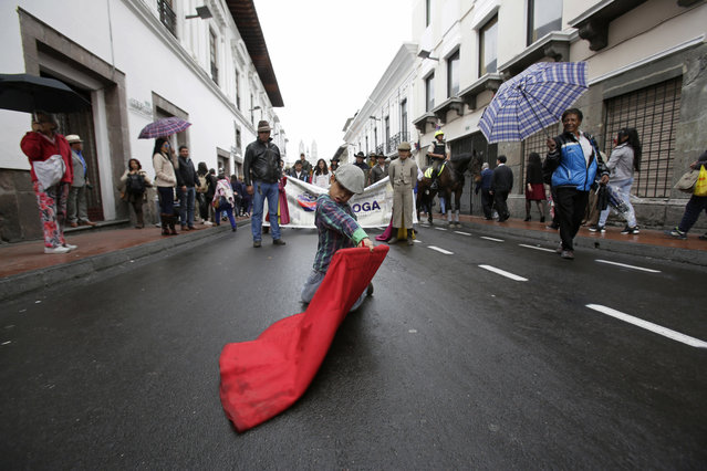 """A boy pretends to bullfight during a protest by people involved in the bullfighting industry as they demand the annual bullfighting fair """"Jesus del Gran Poder"""" be allowed to be held again in Quito, Ecuador, Monday, December 3, 2018. In a 2011 referendum, Quito residents voted to eliminate the fair and any event that includes the death of an animal. (Photo by Dolores Ochoa/AP Photo)"""