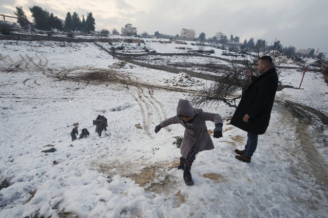 Palestinians play with snow during a snowstorm in the West Bank town of Halhul, north of Hebron January 27, 2016. (Photo by Mussa Qawasma/Reuters)