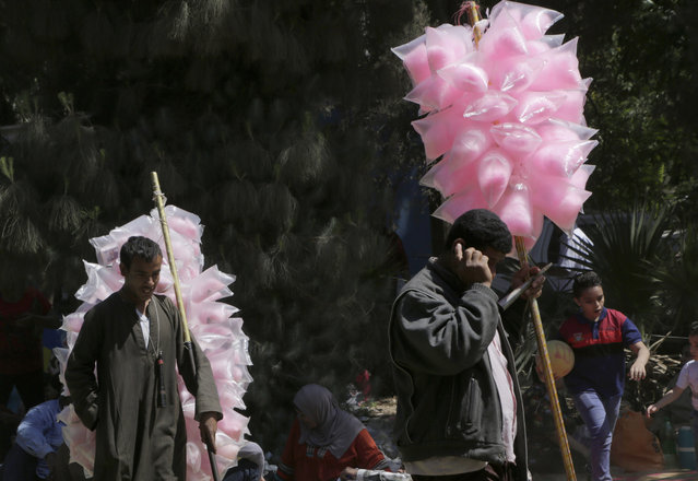 "Egyptian cotton candy venders look for clients at Orman Garden, during Sham el-Nessim, or ""smelling the breeze"", in Giza, Egypt, Monday, April 13, 2015. (Photo by Amr Nabil/AP Photo)"