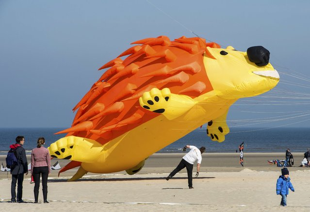 "A giant, hedgehog-shaped kite flies on the beach in Berck, northern France, on April 20, 2015, during the 29th ""Rencontres Internationales de Cerfs Volants"" (International Kite Meeting) which runs from April 18 to 26. (Photo by Philippe Huguen/AFP Photo)"