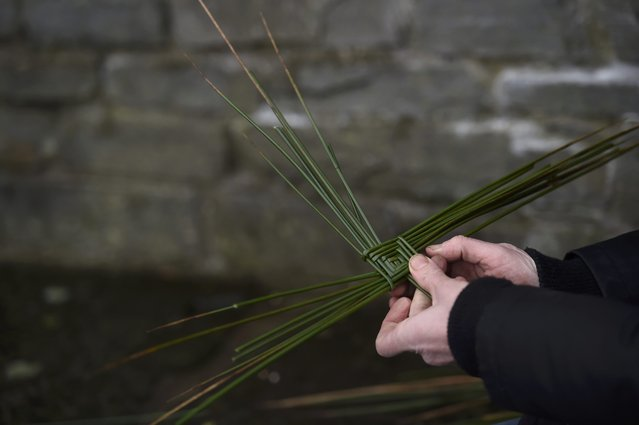 A woman makes a cross from reeds at the holy well of St. Brigid on a Pattern Day pilgrimage to St. Brigid in Liscannor, Ireland February 1, 2017. (Photo by Clodagh Kilcoyne/Reuters)