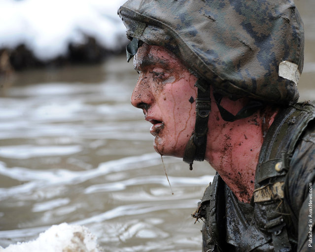 A candidate from Officer Candidate School swims through icy waters during the Quigley in order to complete a combat course at Marine Corps Base Quantico, Va., Jan., 29, 2011. The Quigley involves going through obstacles in water which includes a full immersion underwater