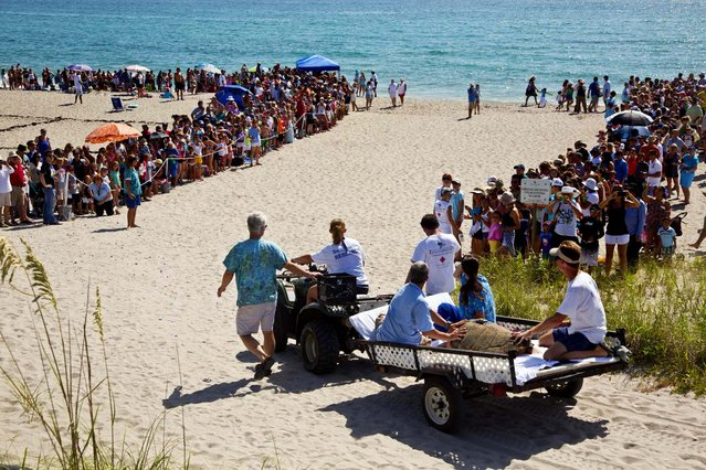 An ATV pulls Kahuna through a sea of people to be released into the ocean
