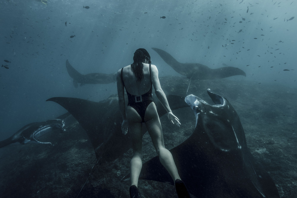 Mermaid from Australia