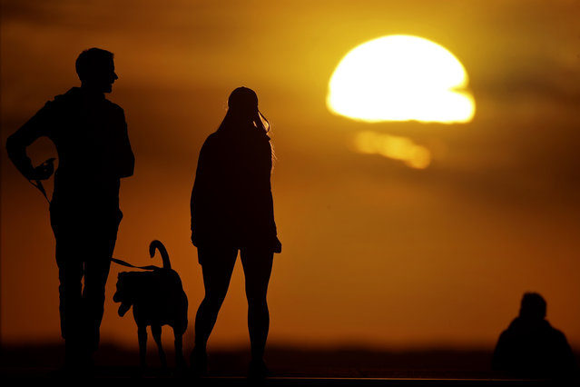 People walk a dog at a park in Kansas City, Mo., as the sun sets Monday, April 20, 2020. The city continues to be under an extended stay-at-home order until May 15 in an attempt to slow the spread of the coronavirus. (Photo by Charlie Riedel/AP Photo)