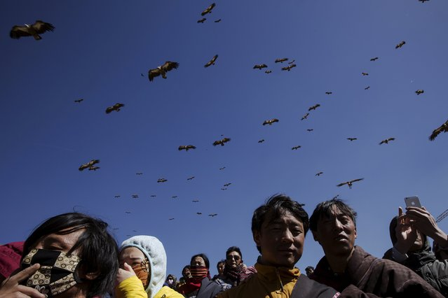 Vultures come from skies over ethnic Tibetans gathering for a sky burial near the Larung valley located some 3700 to 4000 metres above the sea level in Sertar county, Garze Tibetan Autonomous Prefecture, Sichuan province, China October 31, 2015. (Photo by Damir Sagolj/Reuters)