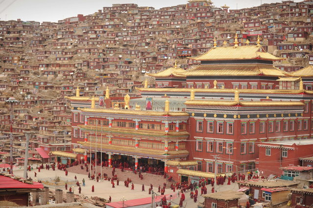 This photo taken on April 4, 2013 shows Buddhist nuns and monks walking through Seda Monastery, the largest Tibetan Buddhist school in the world, with up to 40,000 monks and nuns in residence for some parts of the year. (Photo by Peter Parks/AFP Photo)