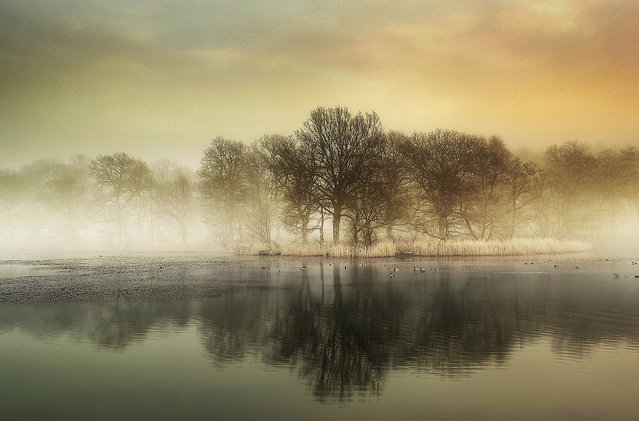 Misty reflections. (Eric Goncalves)