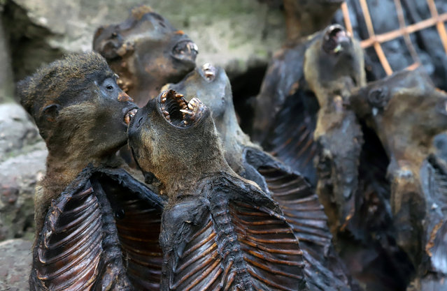 Smoked monkey meat is displayed at an open-air market during a vaccination campaign against the outbreak of Ebola, in Mbandaka, Democratic Republic of Congo, May 23, 2018. (Photo by Kenny Katombe/Reuters)