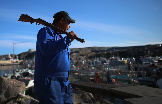 A hunter carries his rifle as he heads to his boat in Ilulissat, on July 19, 2013. (Photo by Joe Raedle/Getty Images via The Atlantic)