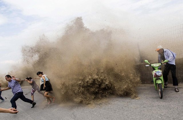 Visitors run away as waves from a tidal bore surge past a barrier on the banks of the Qiantang River, under the influence of Typhoon Trami, in Hangzhou, China, on August 23, 2013. Rainstorms brought by Typhoon Trami swept the southeastern coastal provinces of Zhejiang and Fujian, affecting 1.4 million people and forcing relocation of 351,000, the Ministry of Civil Affairs said on Friday. (Photo by Reuters)