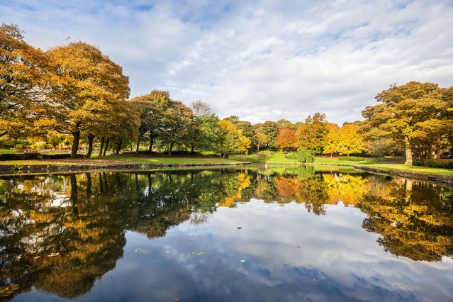 Autumn in the park, Bradford, October 21, 2016. (Photo by Dave Zdanowicz/Rex Features/Shutterstock)