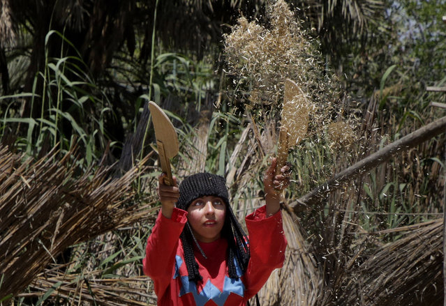 "An Egyptian actress working at the Pharaonic Village simulates ancient agriculture scenes during a show marking Sham el-Nessim, or ""smelling the breeze"", in Giza, Egypt, Monday, April 13, 2015. (Photo by Amr Nabil/AP Photo)"