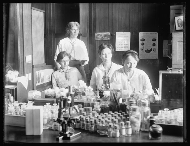 Women scientists (standing) Miss Nellie A. Brown, (seated L-R) Miss Lucia McCollock, Miss Mary K. Bryan and Miss Florence Hedges work at a laboratory, circa 1910-1920, in this Library of Congress handout photo. (Photo by Reuters/Bain Collection/Library of Congress)