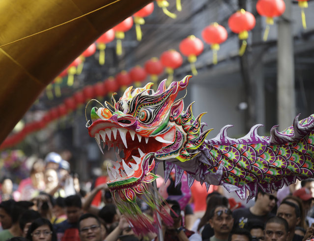 People watch dragon dance performance in front of a business establishment in celebration of Chinese New Year at Manila's Chinatown district of Binondo, Philippines, Friday, January 31, 2014. (Photo by Bullit Marquez/AP Photo)